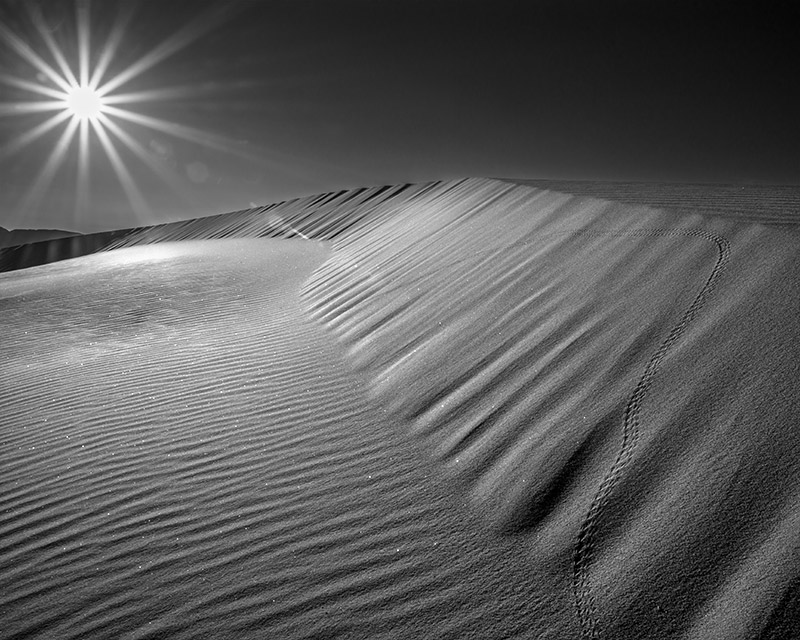 In most cases when I'm photographing sand dunes, I avoid footprints like the plague. To be fair, these are a bit more delicate...