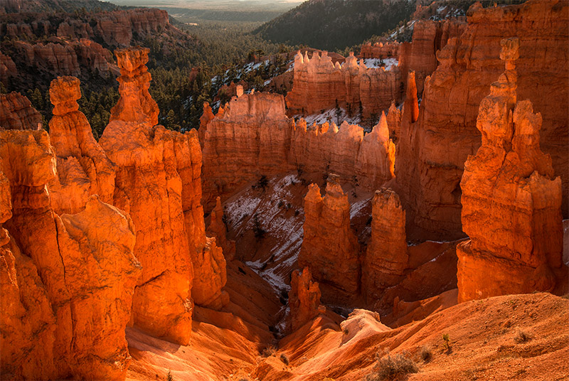 Earlymorning light on the Bryce amphitheater accents the colors of the Claron Formation, sediments rich in iron and manganese...