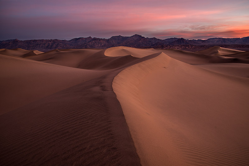 The sand dunes at Mesquite Flat, near Stovepipe Wells in Death Valley NP, have a much shorter maximum height (~130 feet) than...