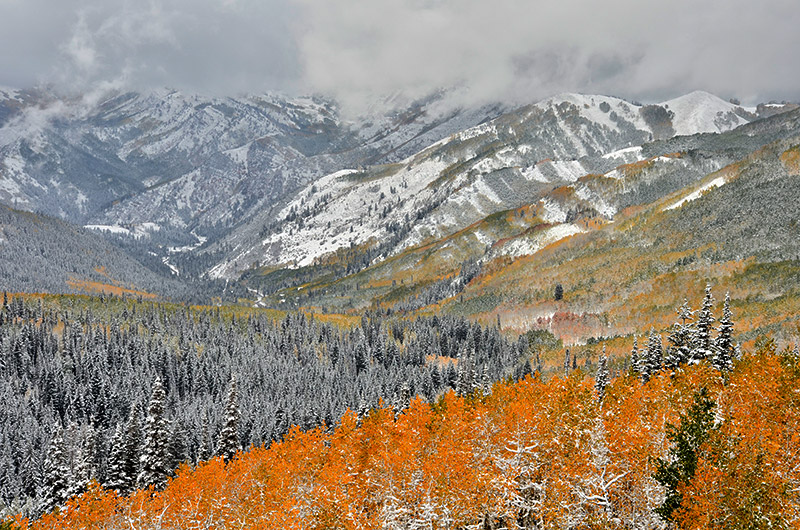 Big Cottonwood Canyon, Wasatch, fall colors