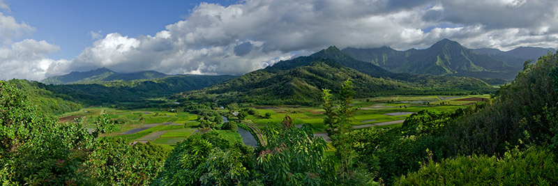 A four-image panorama of the Hanalei valley on the island of Kaua'i.