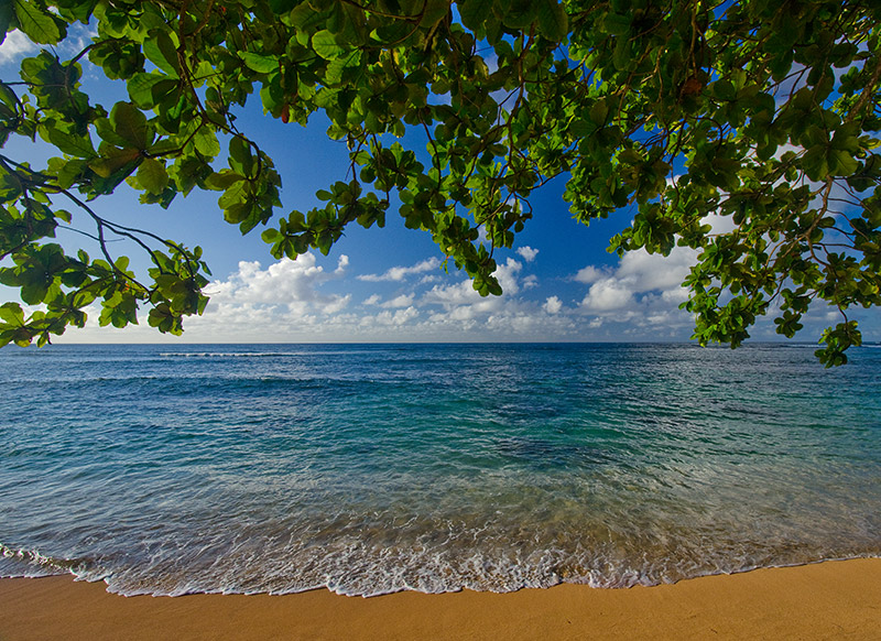 Possibly my favorite tiny secluded beach on the north shore of Kaua'i, near Princeville.