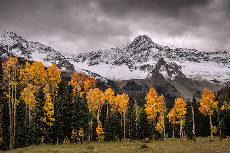 A late-September snowstorm builds over the Sneffels Range at the fall-color peak of these aspens.