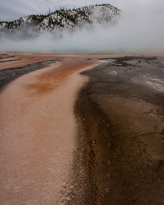 Human shoe prints look absolutely repugnant in and around the hot springs of Yellowstone, but wildlife tracks are a completely...