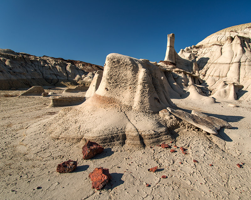 In the Bisti/De-Na-Zin Wilderness, the grays and whites of the dominant sandstone, mudstone, and shale contrast sharply with...