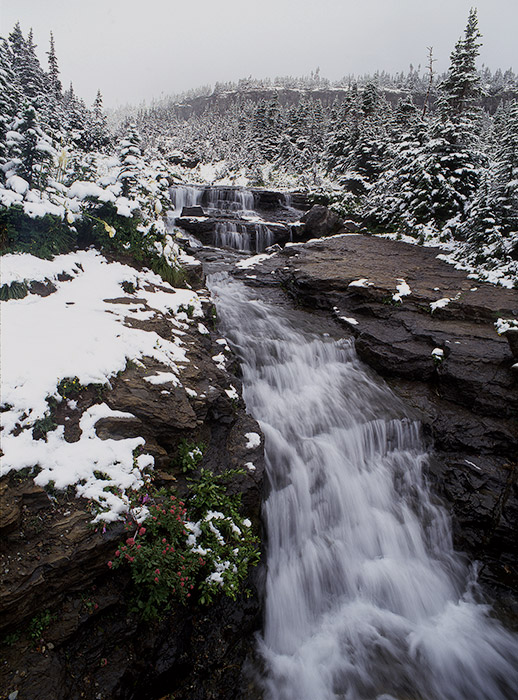 This fresh snow fell during the first week of August while my wife, Crystal, and I were visiting in 2002. She was less...